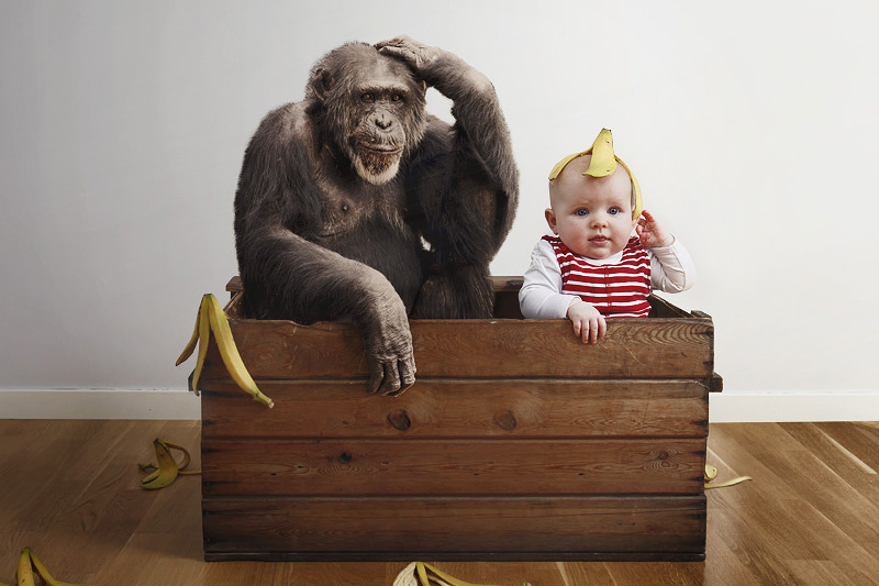 Bébé et singe