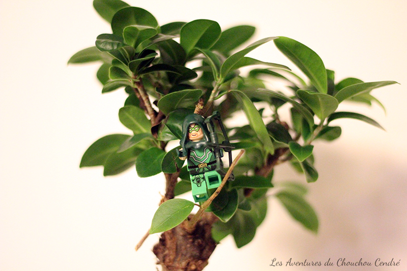 Green arrow lego