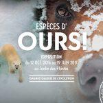 Découverte de l'exposition «Espèces d'ours» à Paris + 1 place à gagner