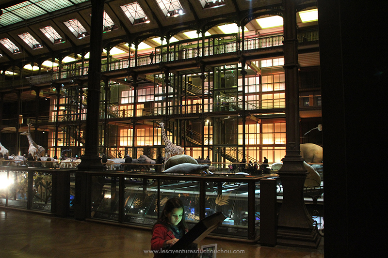 museum-national-histoire-naturelle-2