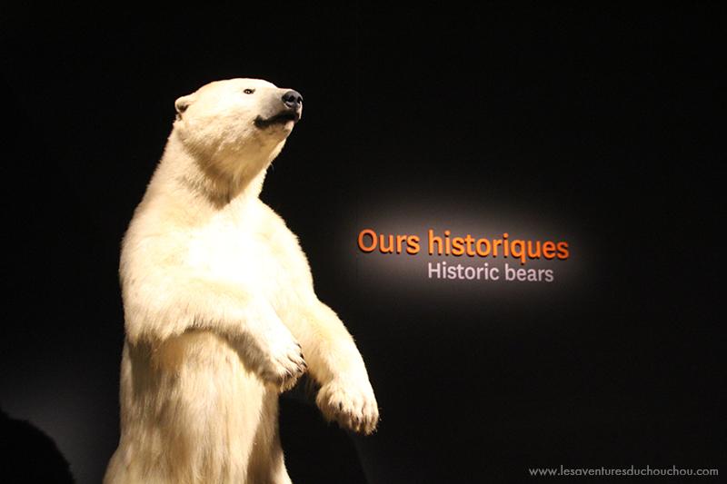 Ours historiques