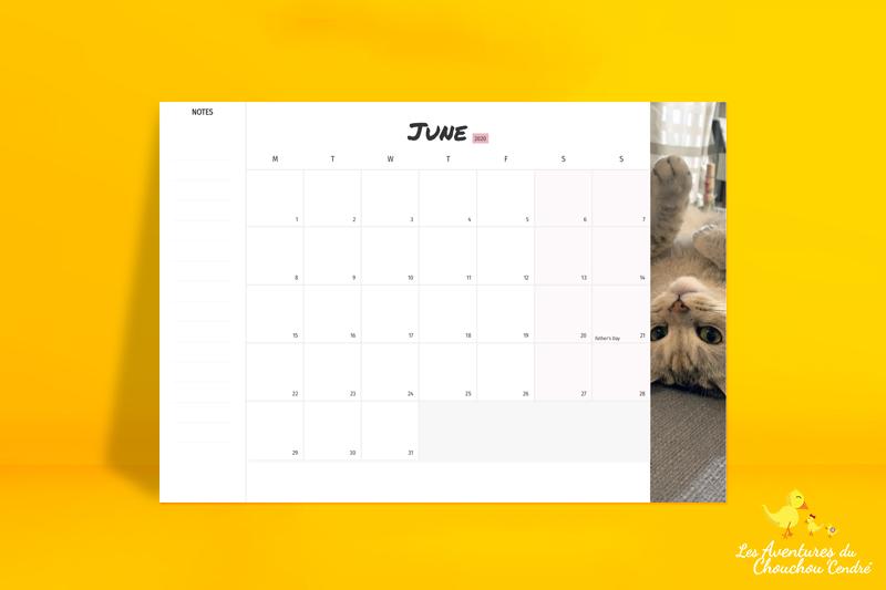 nice calendar